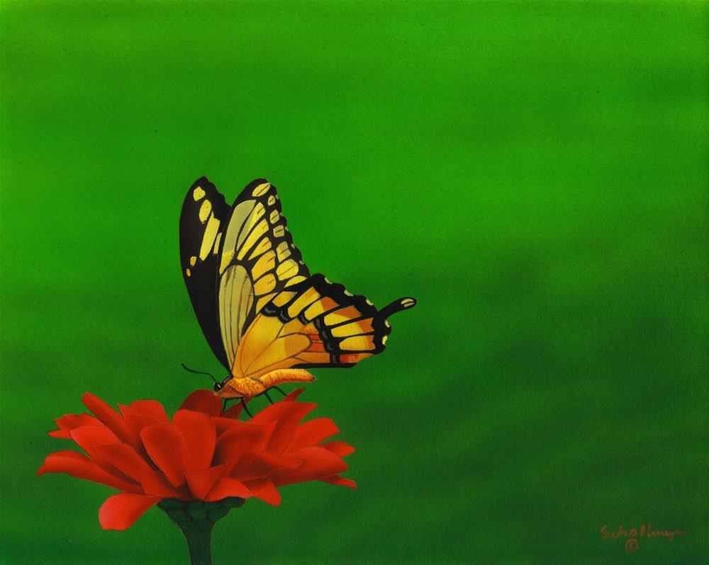"""""""Swallowtail & Zinnia"""" original fine art by Fred Schollmeyer"""