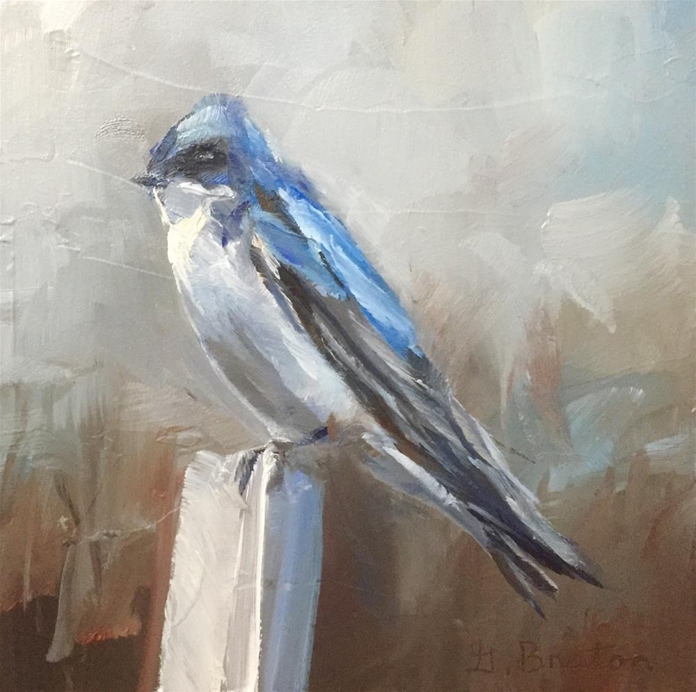 """Perched Tree Swallow"" original fine art by Gary Bruton"