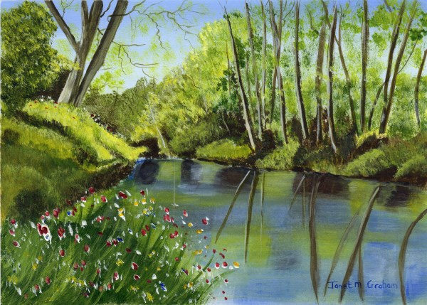 """Tranquil River"" original fine art by Janet Graham"