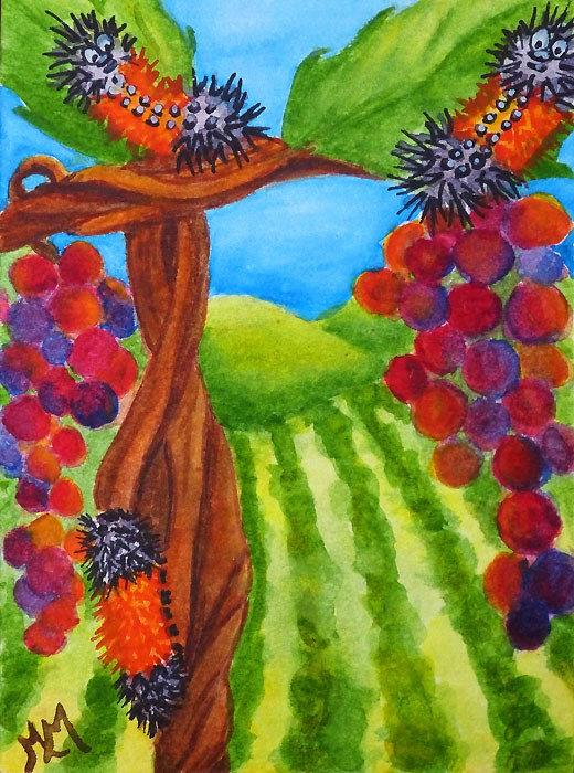 """Hanging in the Vineyard"" original fine art by Monique Morin Matson"