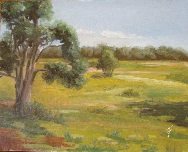 """""""Wildflower Vista"""" original fine art by Jane Frederick"""