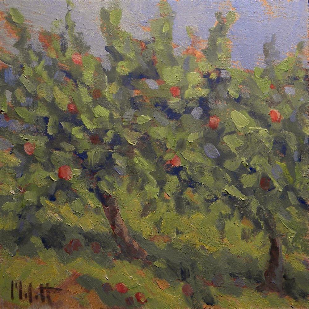"""Fruit Trees Apple Orchard Oil Painting Contemporary Impressionism"" original fine art by Heidi Malott"
