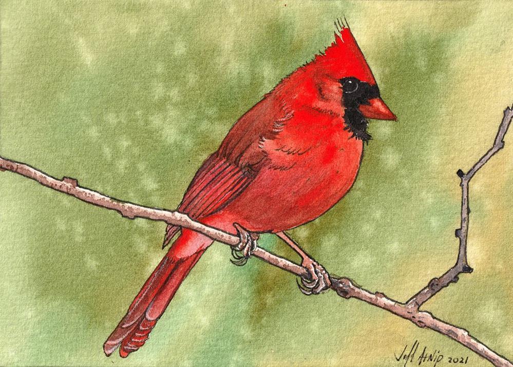 """Some Kind Of Red Bird"" original fine art by Jeff Atnip"