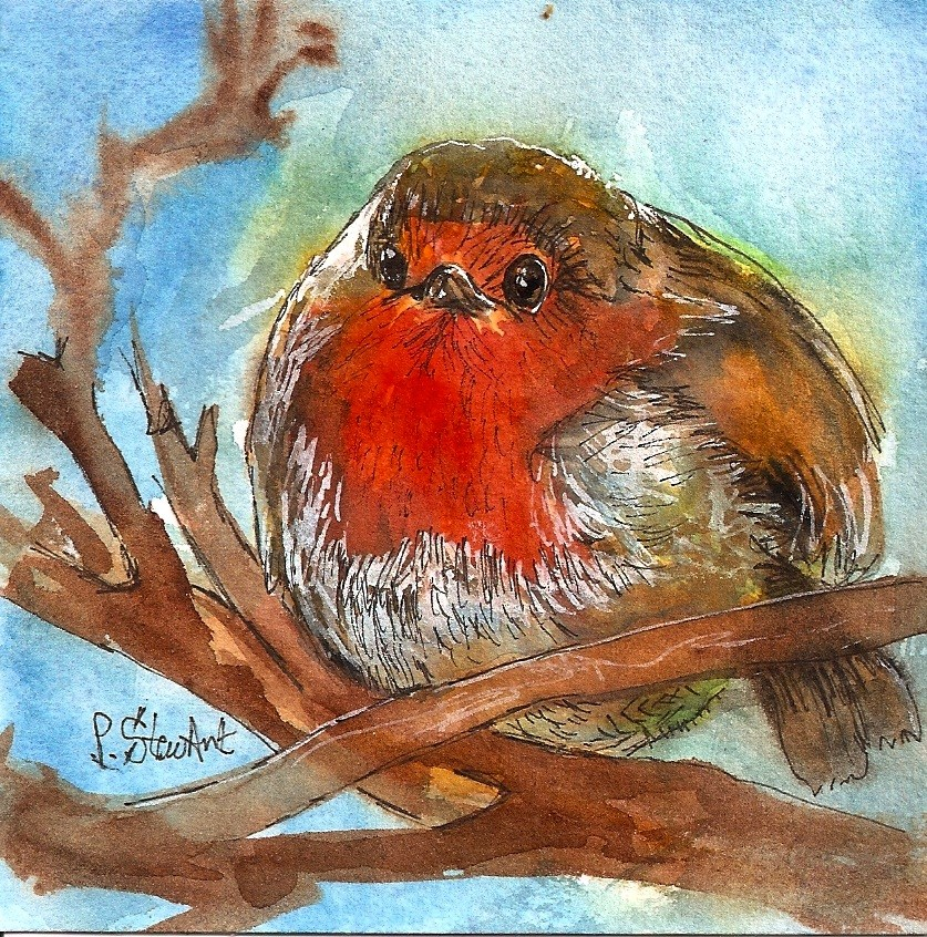 """4x4 Fat Robin Bird Watercolor Pen and Ink Illustration Painting by Penny StewArt"" original fine art by Penny Lee StewArt"