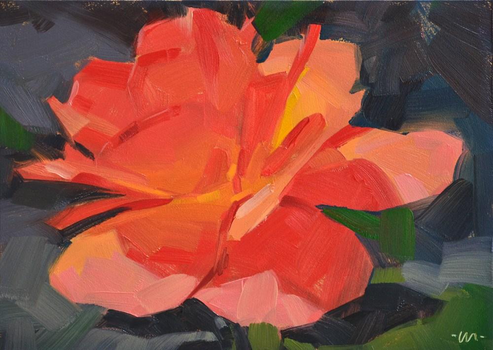 """""""Blushing Rose"""" original fine art by Carol Marine"""