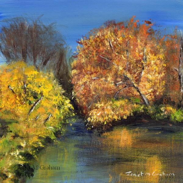 """Autumn"" original fine art by Janet Graham"