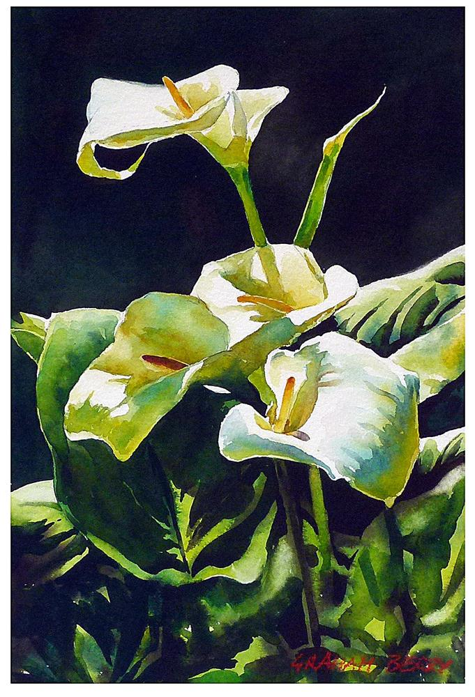 """Calla Lilies."" original fine art by Graham Berry"