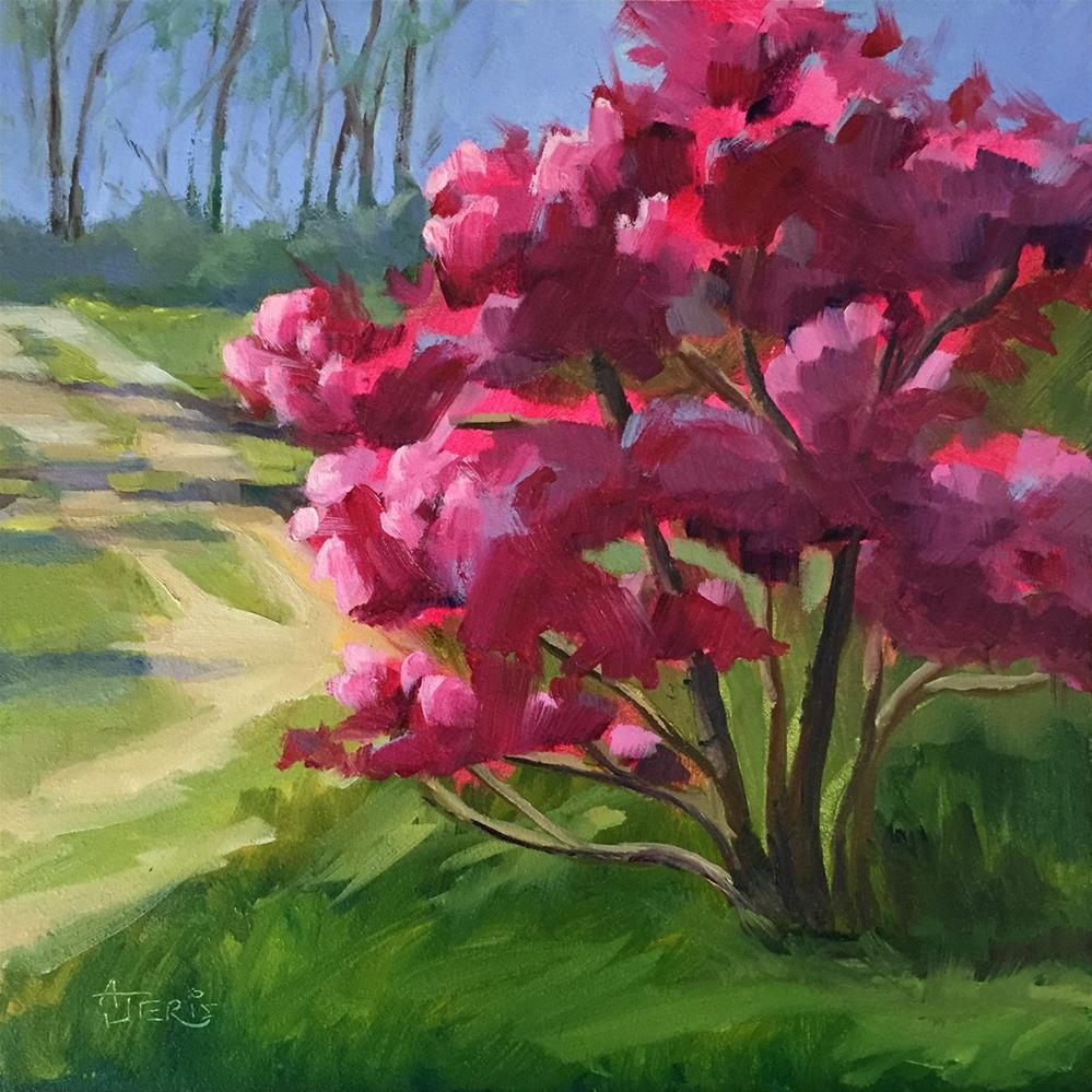 """Magnolias in Sunlight"" original fine art by Andrea Jeris"