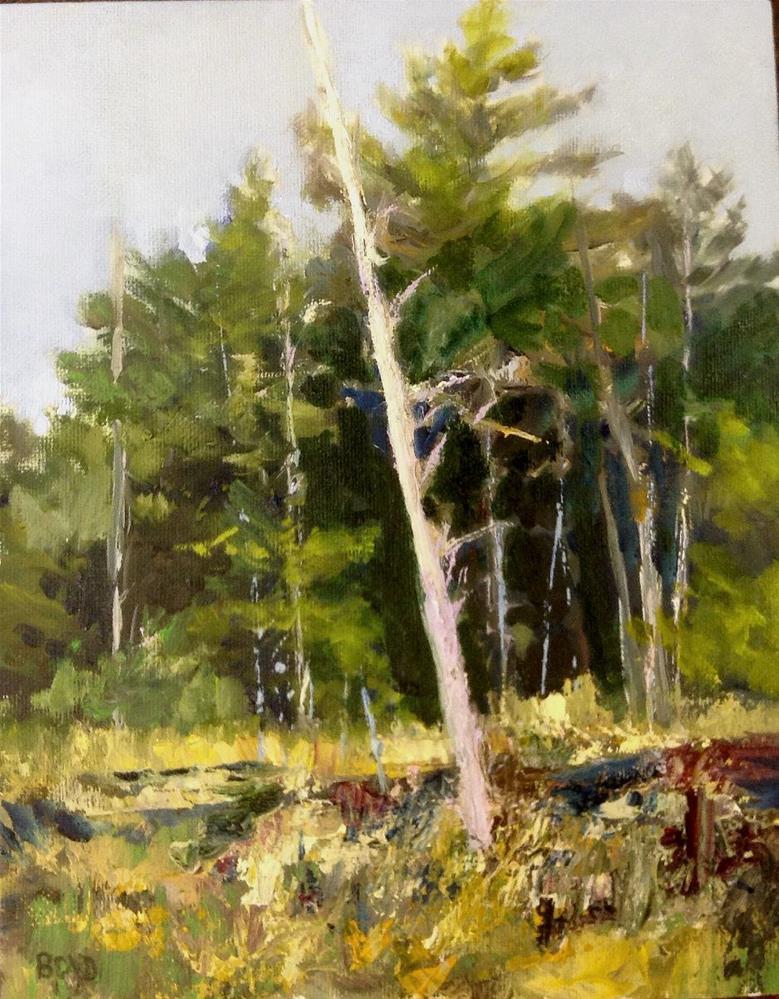 """""""Untitled"""" original fine art by Cathy Boyd"""