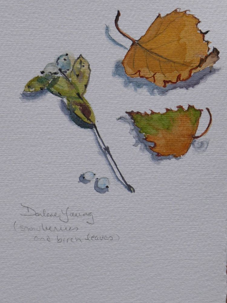 """577 Snow Berries and Birch Leaves"" original fine art by Darlene Young"