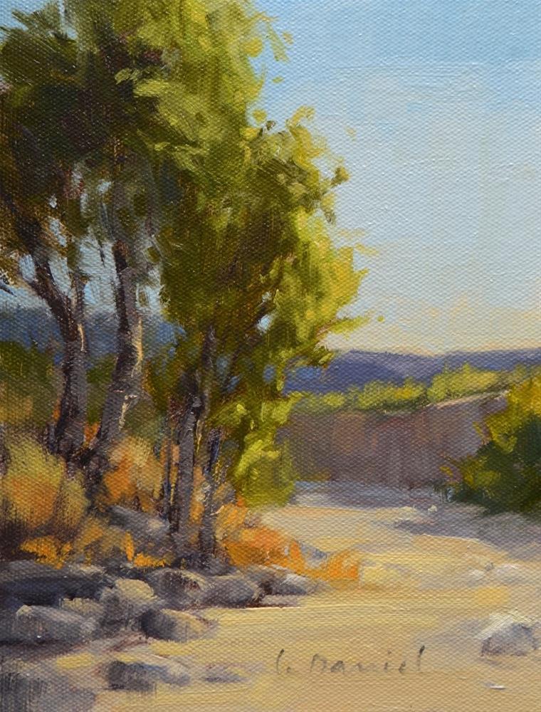 """Backlit Arroyo - Big Bend, Texas"" original fine art by Laurel Daniel"