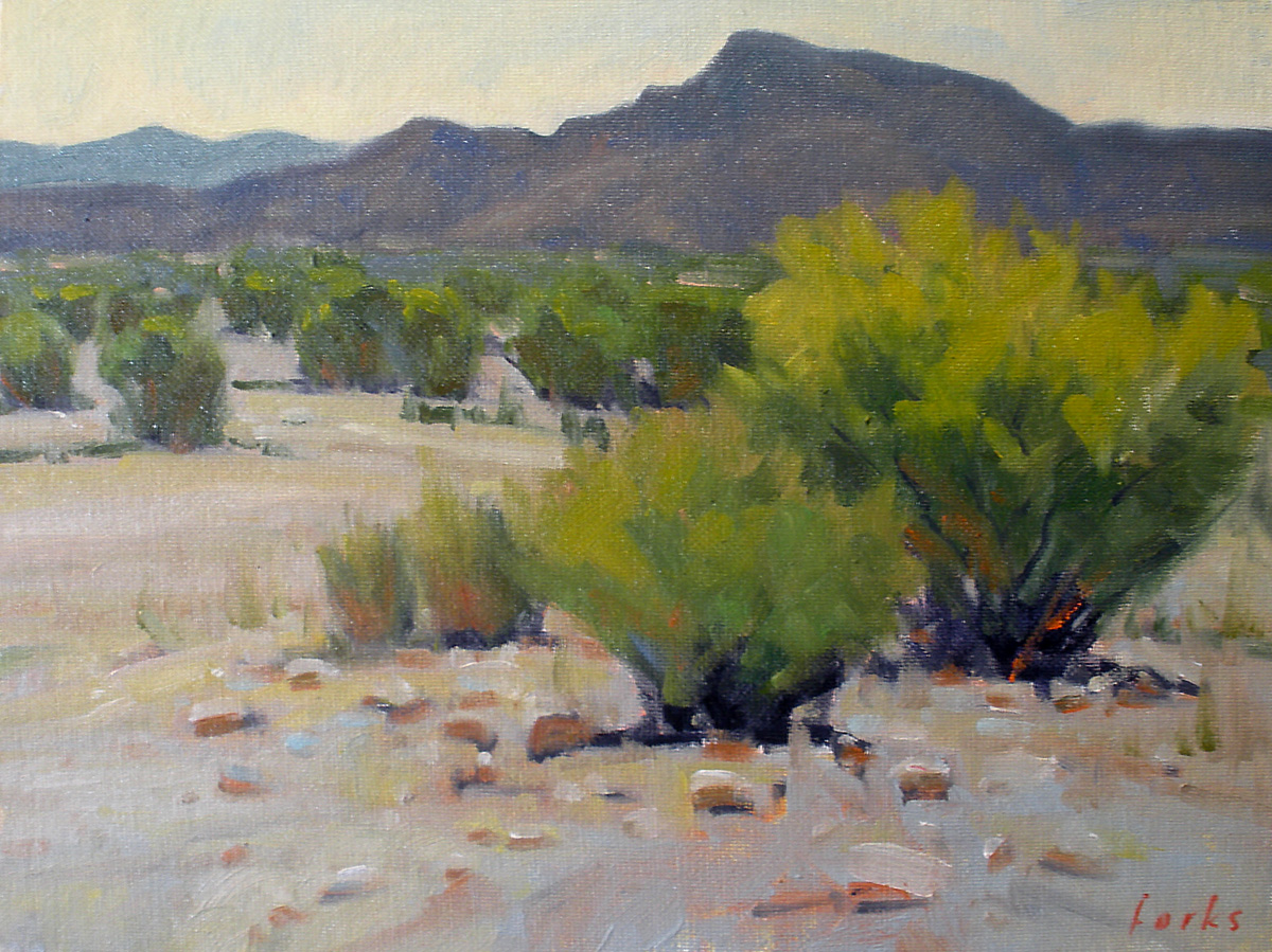 """Persimmon Gap"" original fine art by David Forks"