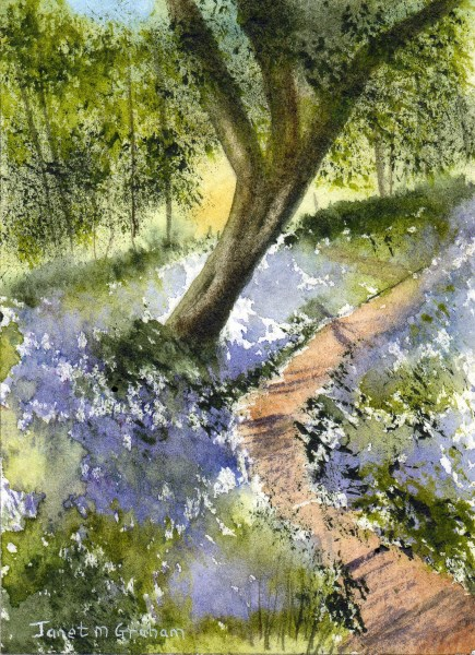 """Bluebell Path ACEO"" original fine art by Janet Graham"