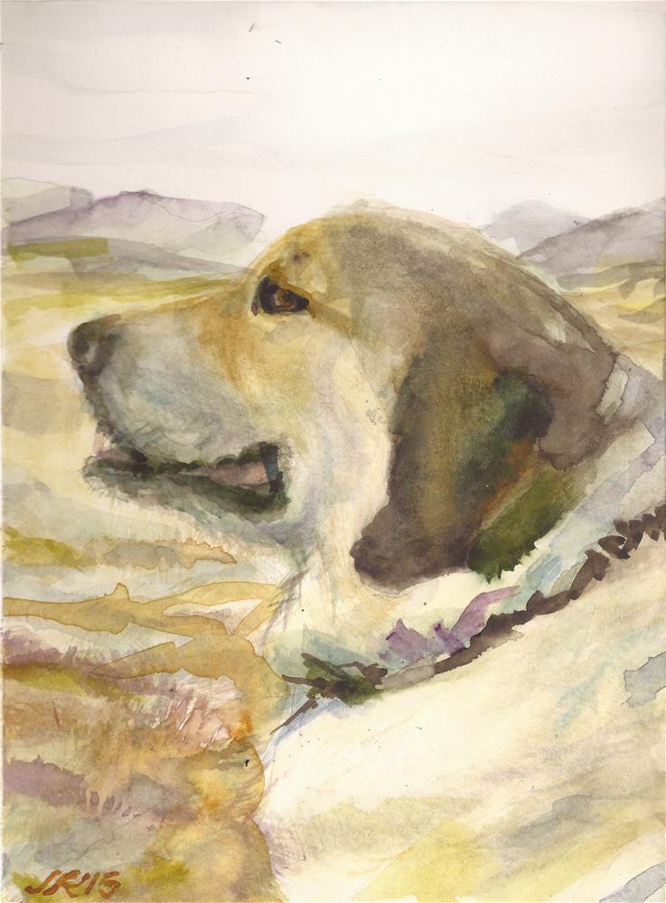 """""""Snap the Anatolian Shepherd"""" original fine art by Jean Krueger"""