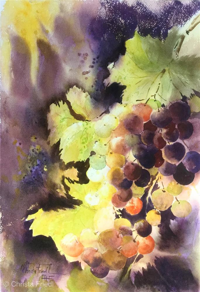 """Sunlit grapes"" original fine art by Christa Friedl"