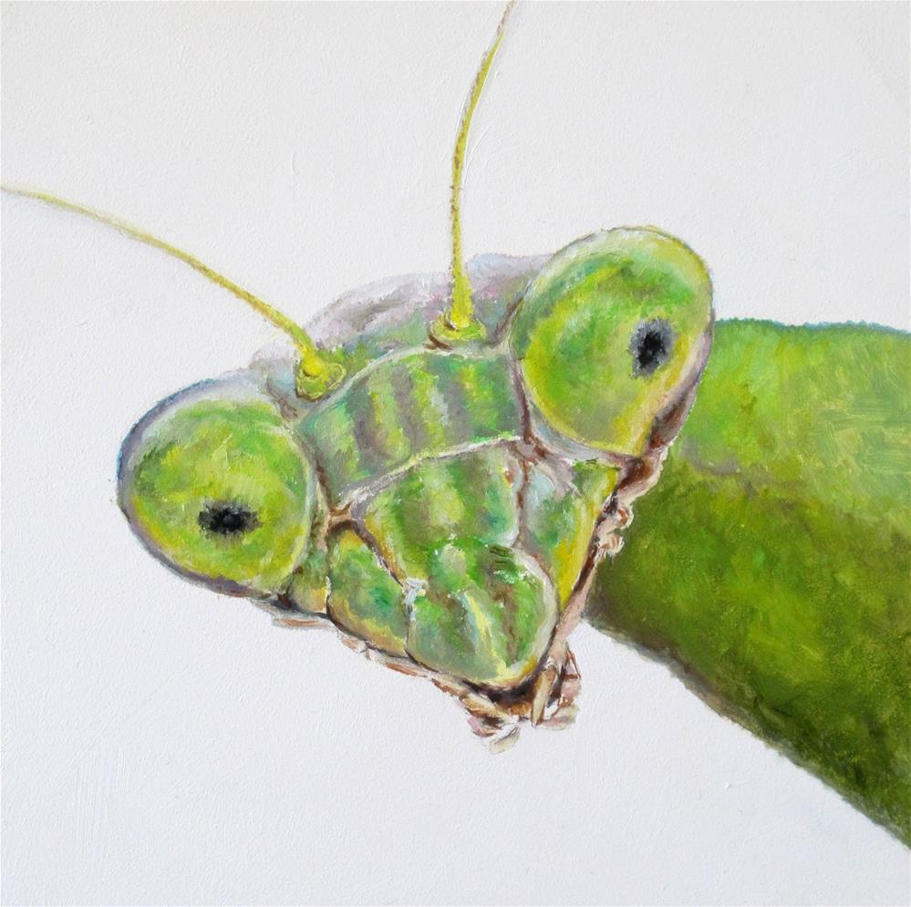 """Praying Mantis"" original fine art by Linda Demers"