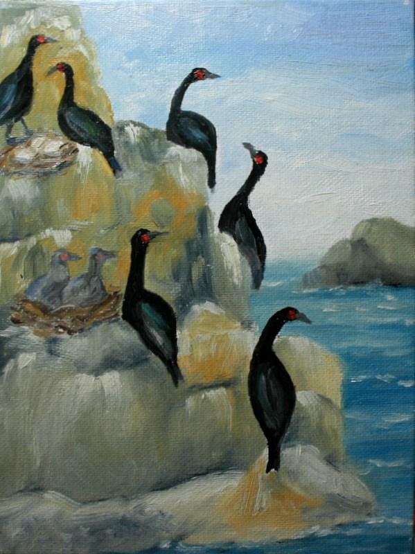 """""""Pelagic Cormorants"""" original fine art by Jean Nelson"""