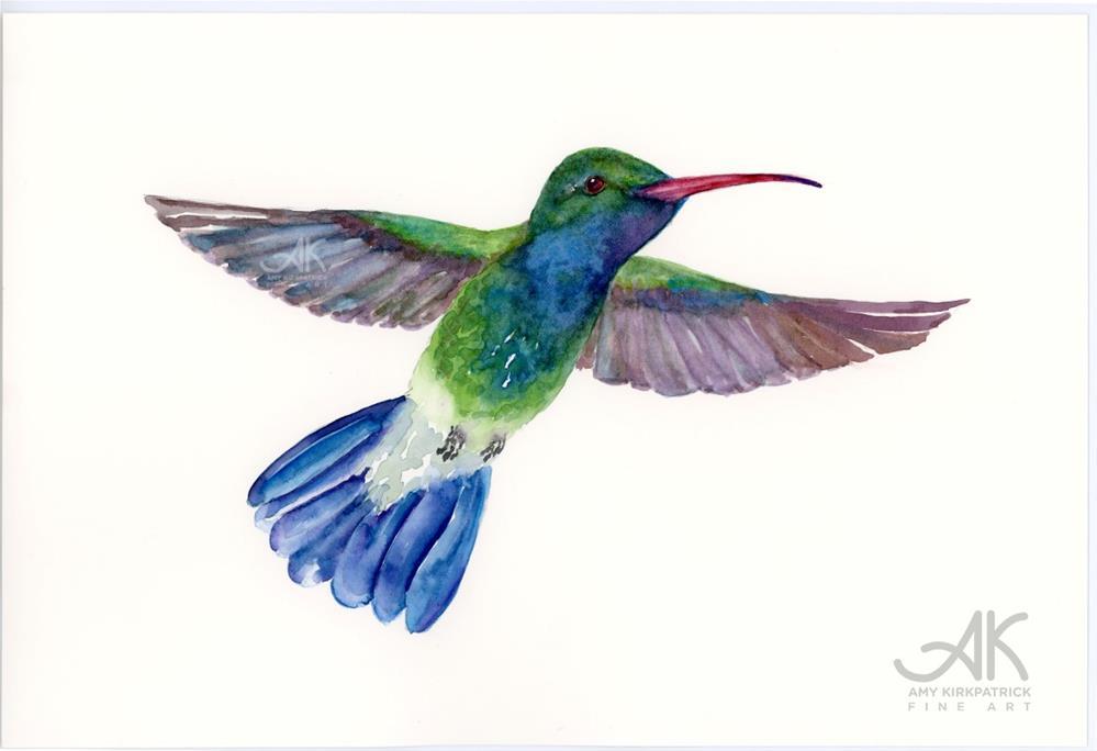 """""""BROAD-BILLED FANTAIL HUMMINGBIRD #0474"""" original fine art by Amy Kirkpatrick"""