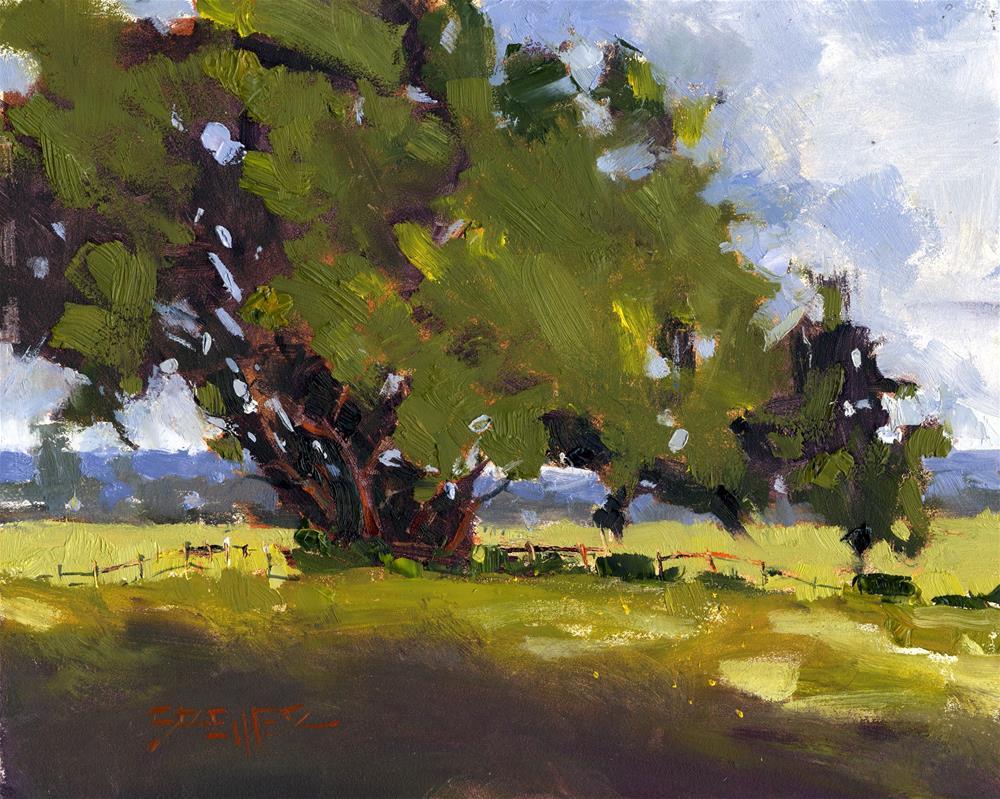 """Shaped By Wind"" original fine art by Kent Brewer"