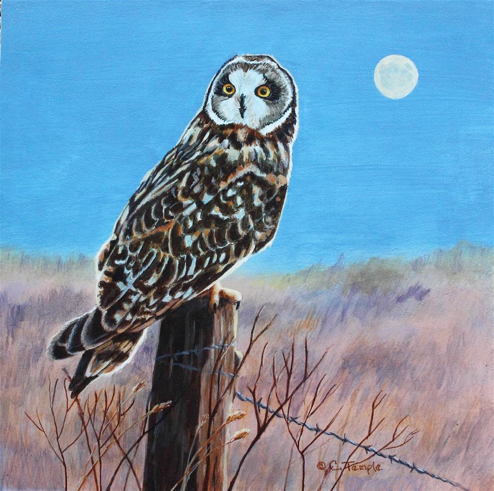 """Twilight Hunter"" original fine art by Catherine Temple"