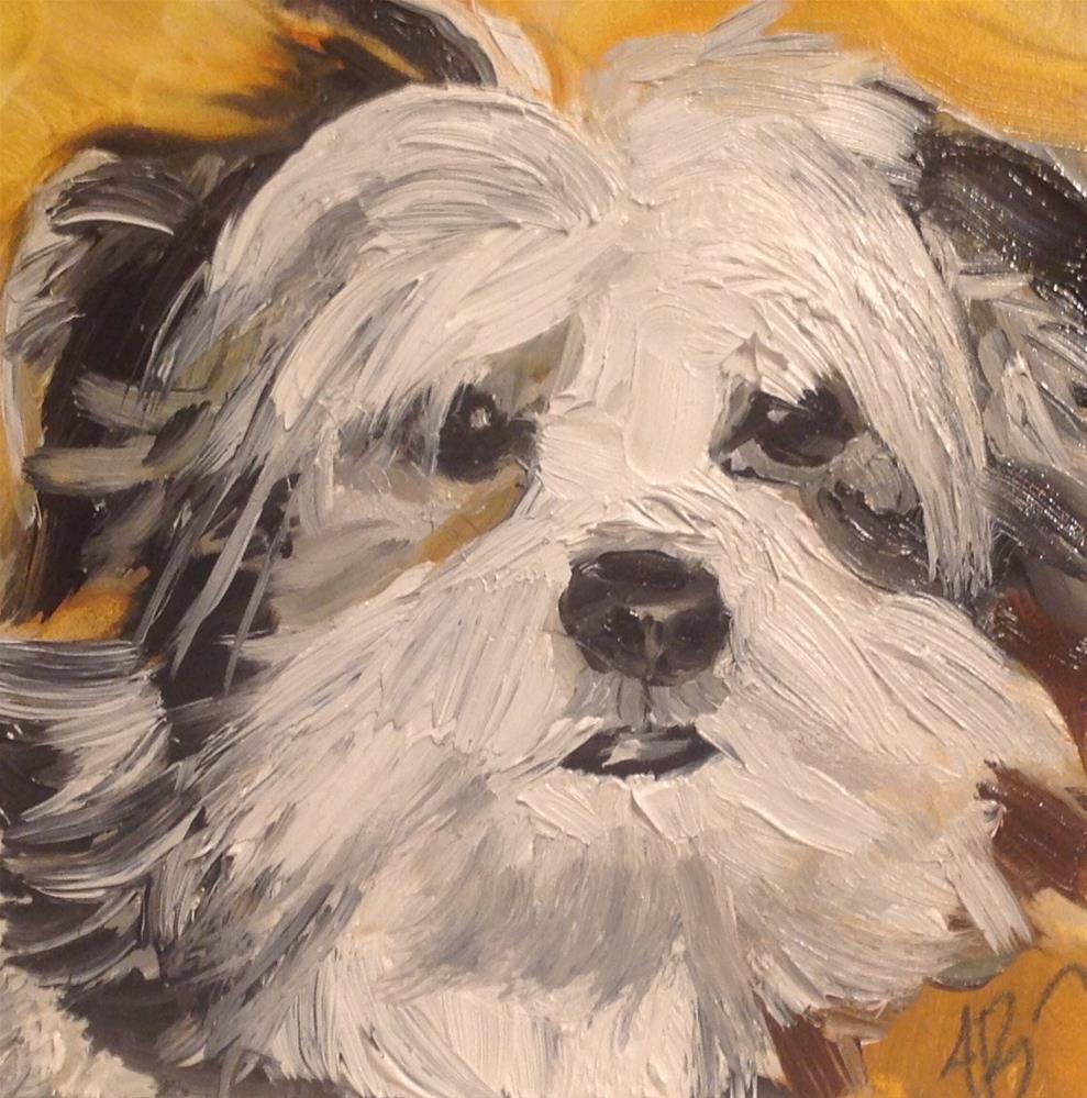 """Black and White Shaggy Pup"" original fine art by Annette Balesteri"