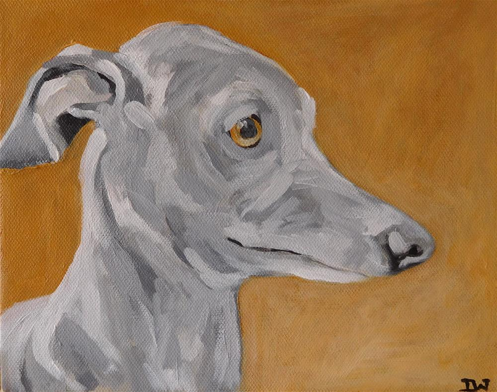 """Whippet"" original fine art by Daryl West"