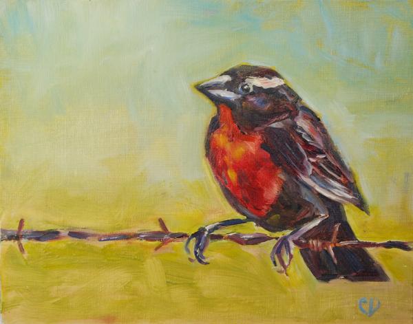 """""""Bird on A Wire"""" original fine art by Carol DeMumbrum"""