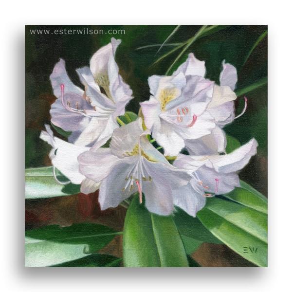 """Garden Jewel"" original fine art by Ester Wilson"