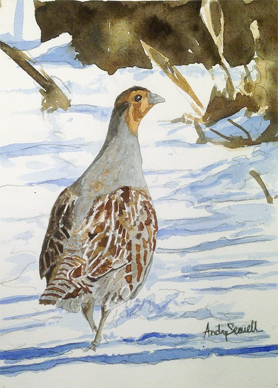 """Winter Hun"" original fine art by Andy Sewell"