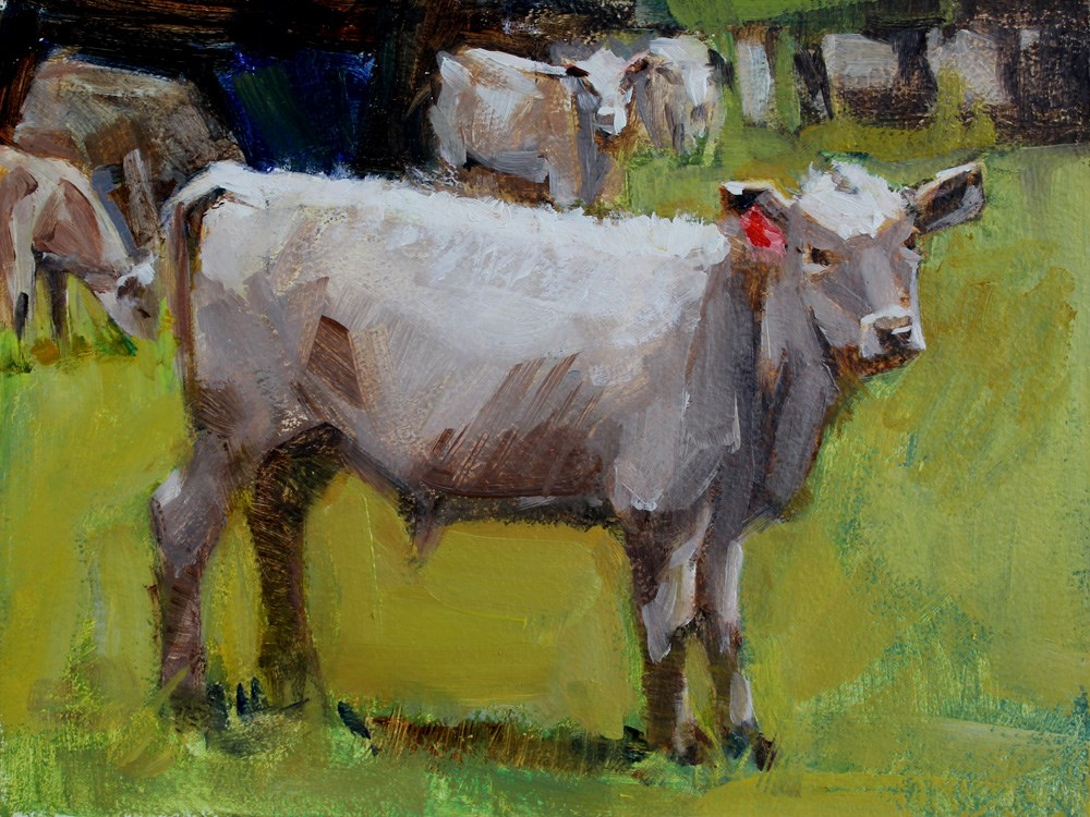 """""""Calf with a Red Earring"""" original fine art by Gretchen Hancock"""