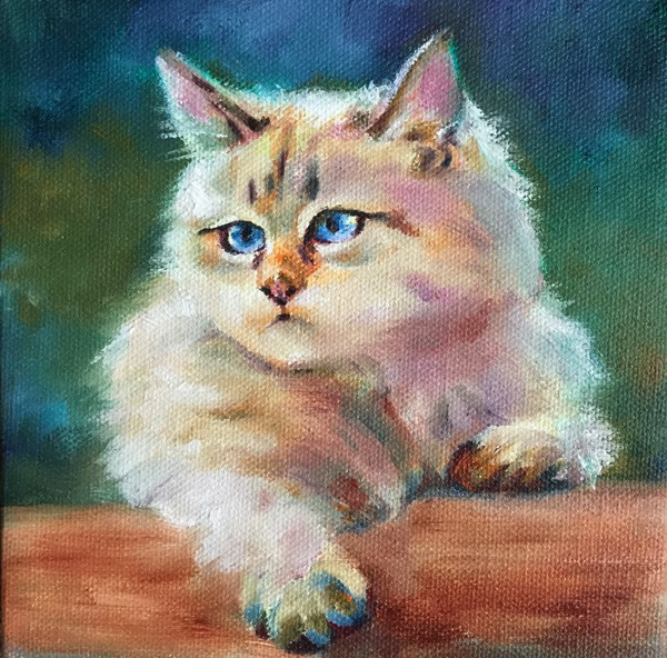 """cat01"" original fine art by Joy Cai"