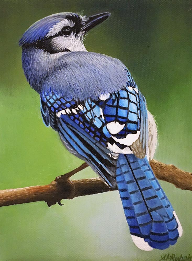 """Blue Jay"" original fine art by Catherine Al-Rubaie"