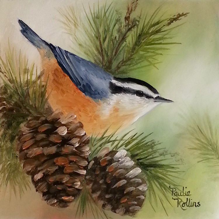 """Pine Cones"" original fine art by Paulie Rollins"