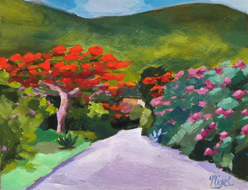 """Flamboyant tree study #3"" original fine art by Nigel Williams"