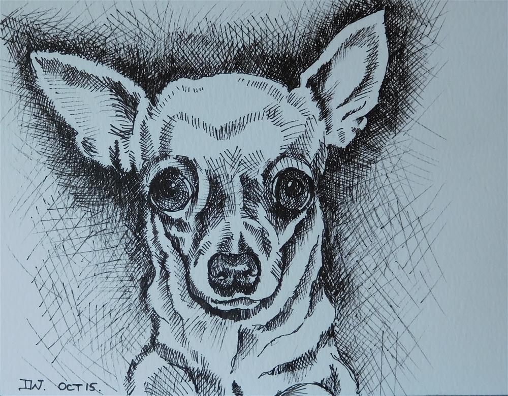 """Chihuahua (Dog sketch 5)"" original fine art by Daryl West"