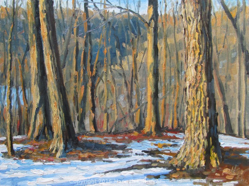 """February Among the Trees"" original fine art by Hannah C. Heyer"