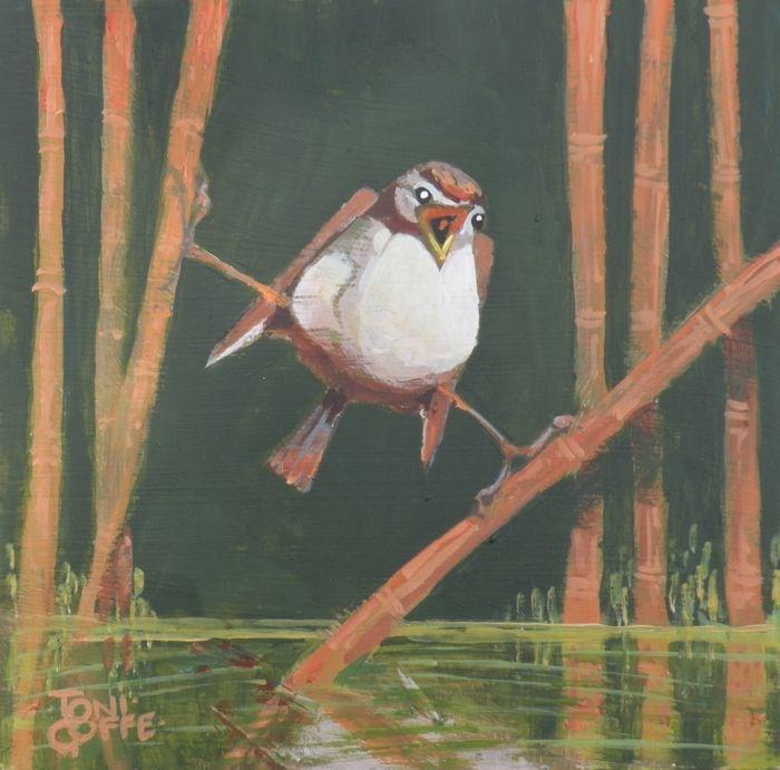 """Wren"" original fine art by Toni Goffe"
