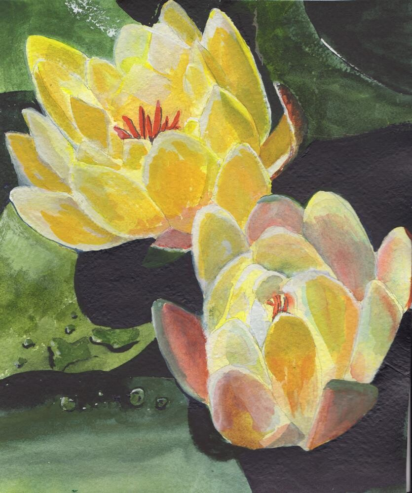 """""""Yellow Water Lilies"""" original fine art by Bunny Griffeth"""
