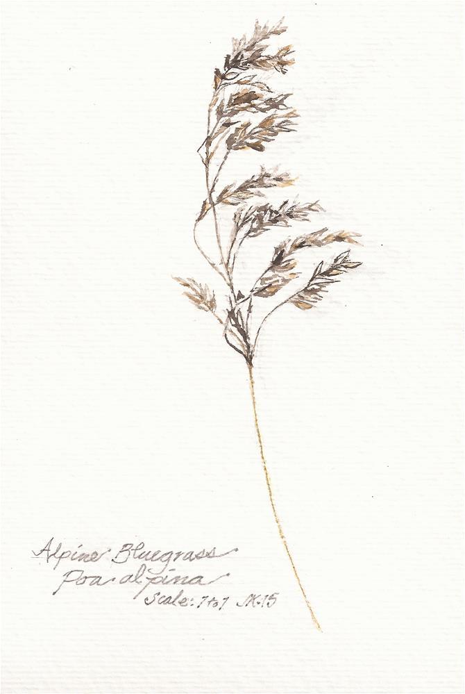 """Alpine Bluegrass"" original fine art by Jean Krueger"