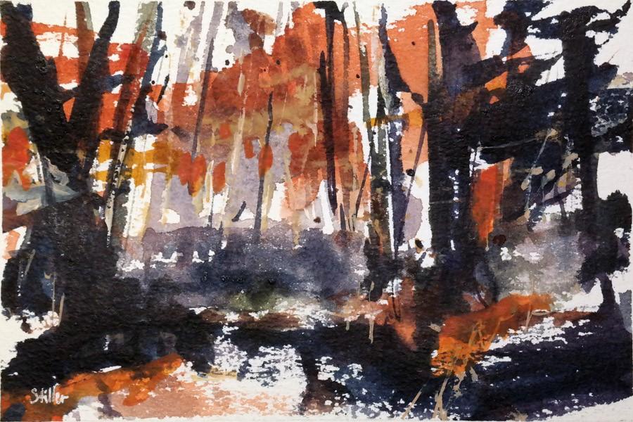 """""""3028 Fall Forest 02"""" original fine art by Dietmar Stiller"""