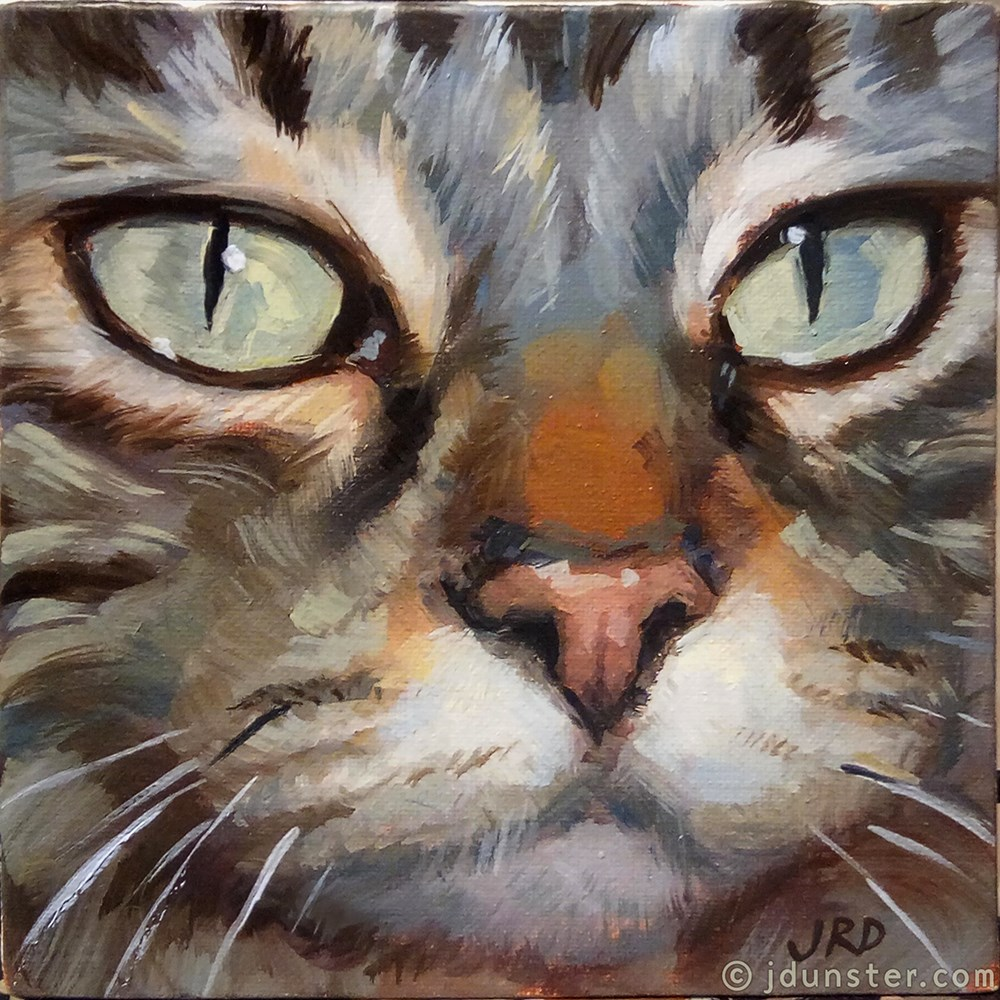 """Close-up Tabby"" original fine art by J. Dunster"