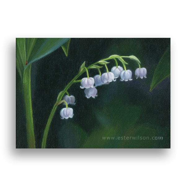 """Lily of the Valley"" original fine art by Ester Wilson"