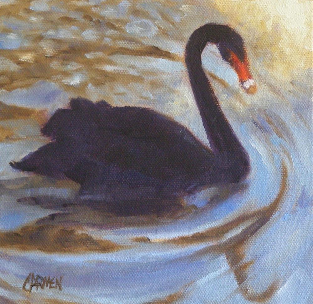 """""""Black Swan, 6x6 Oil on Canvas"""" original fine art by Carmen Beecher"""