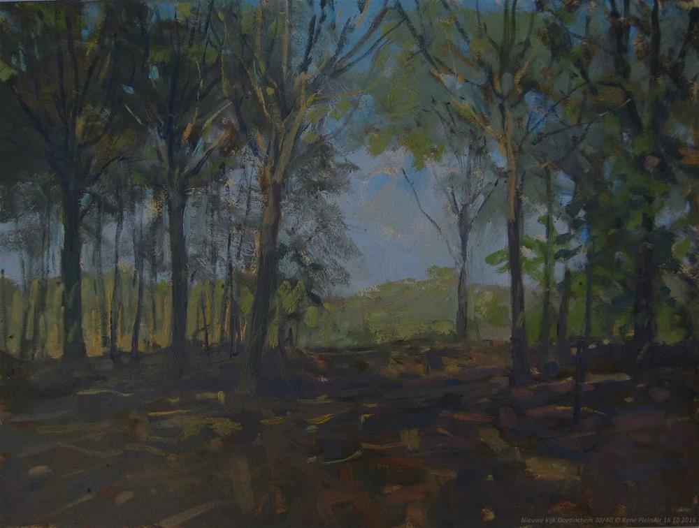"""New view. Doetinchem, The Netherlands."" original fine art by René PleinAir"