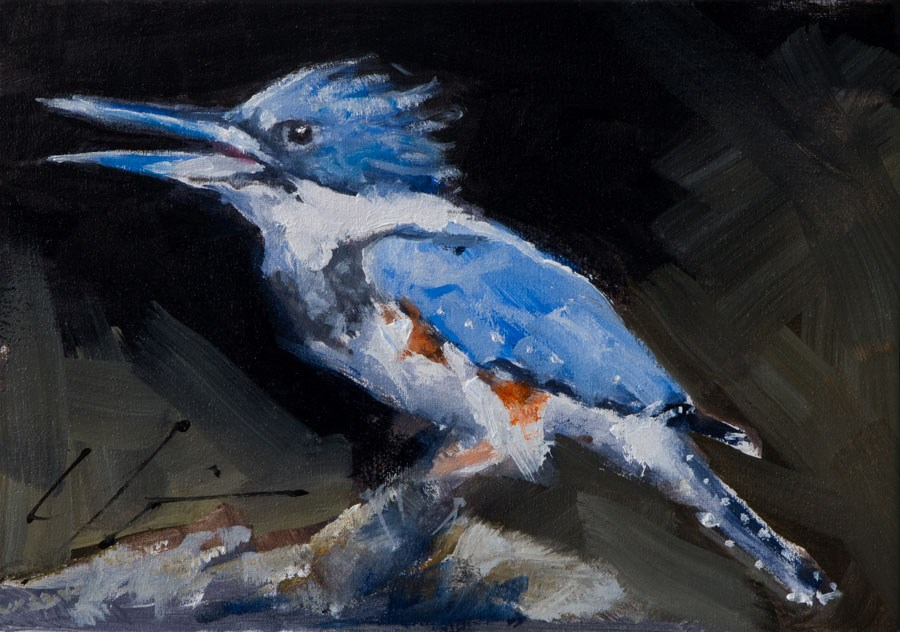 """Kingfisher's Call"" original fine art by Clair Hartmann"