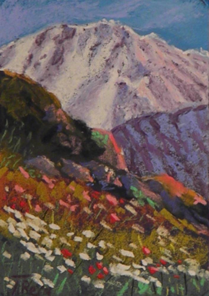 """""""My. Saint Helen"""" original fine art by Toby Reid"""