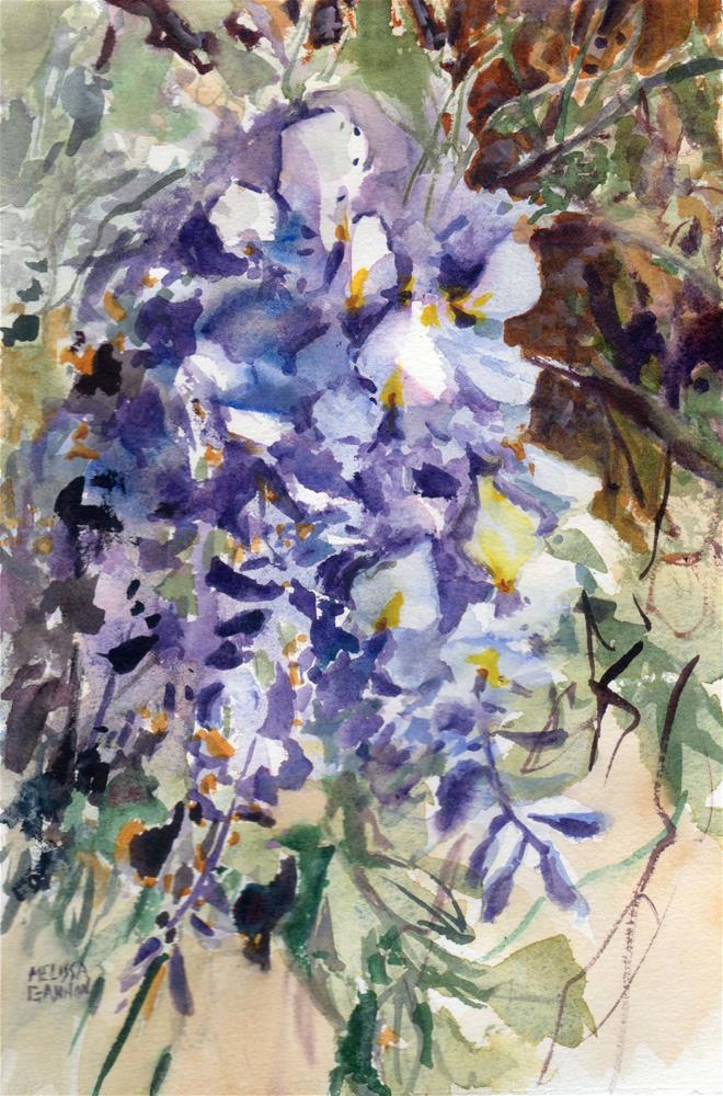 """Springtime Wisteria"" original fine art by Melissa Gannon"