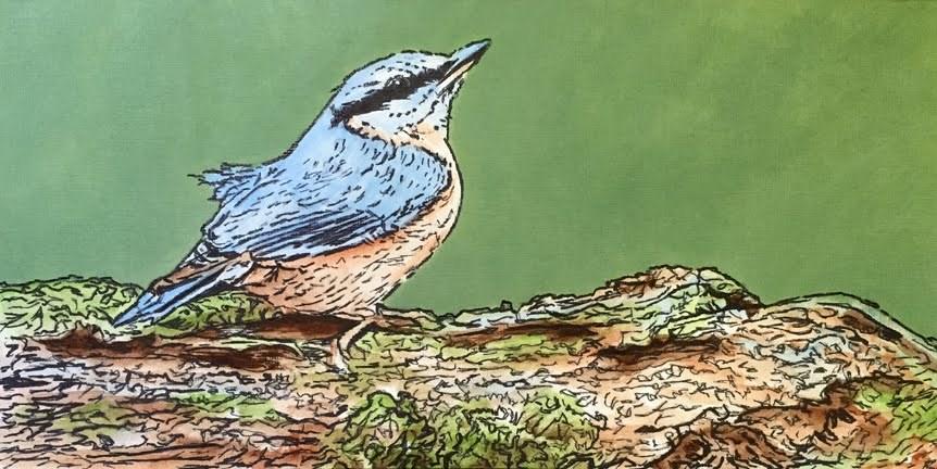 """""""Bird on a Branch 2"""" original fine art by Nan Johnson"""