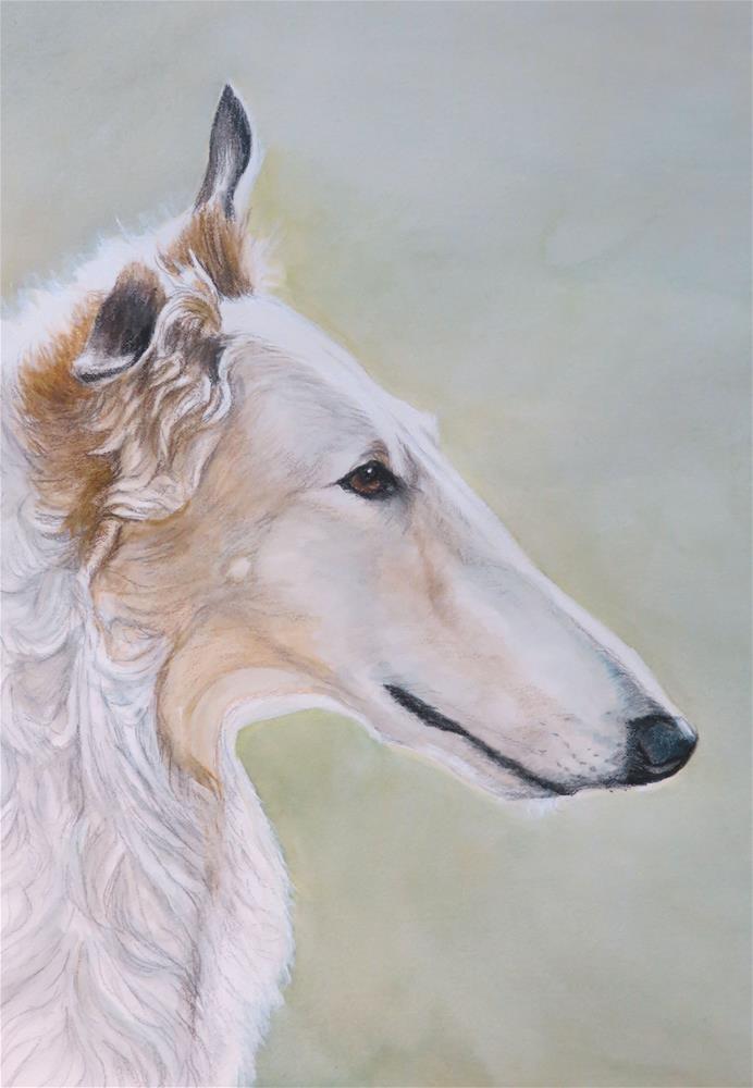 """""""Borzoi"""" original fine art by Charlotte Yealey"""