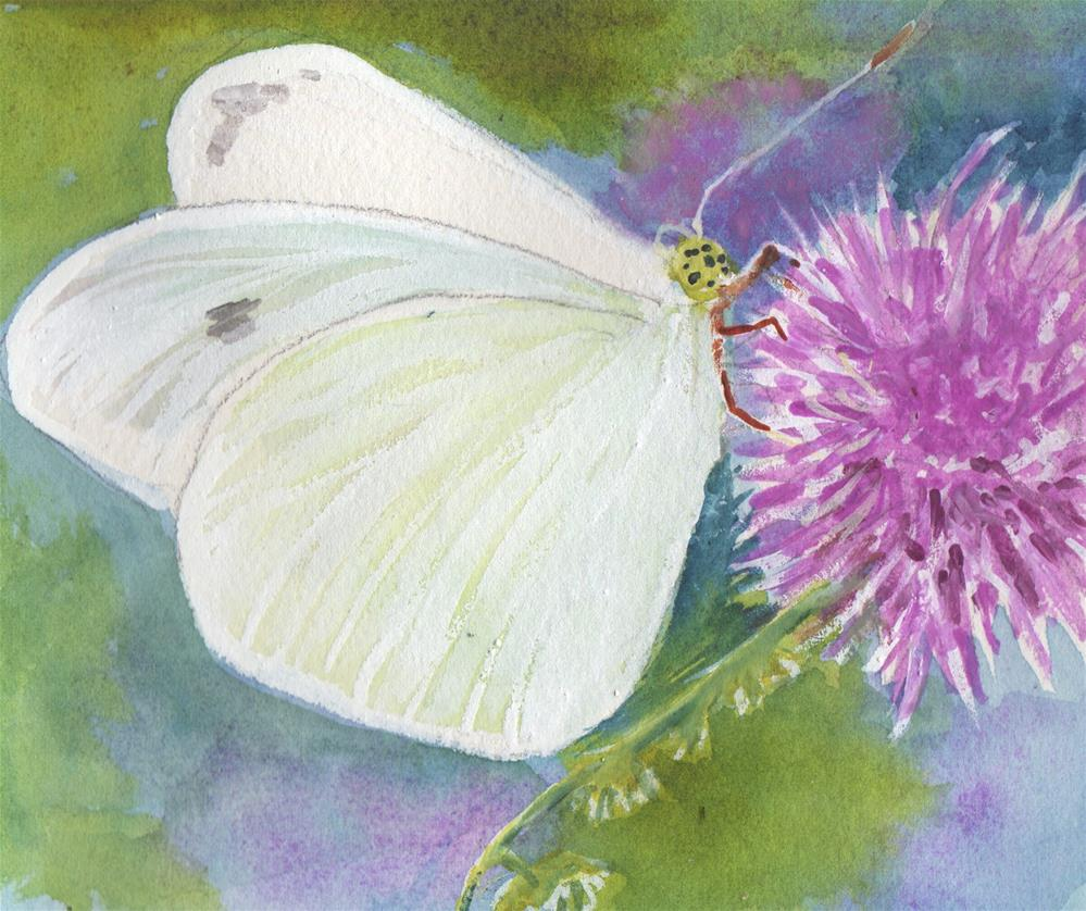 """Cabbage White Butterfly"" original fine art by Bunny Griffeth"